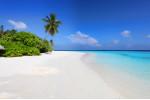 Malediven Insel Traumstrand, Palmen und Meer